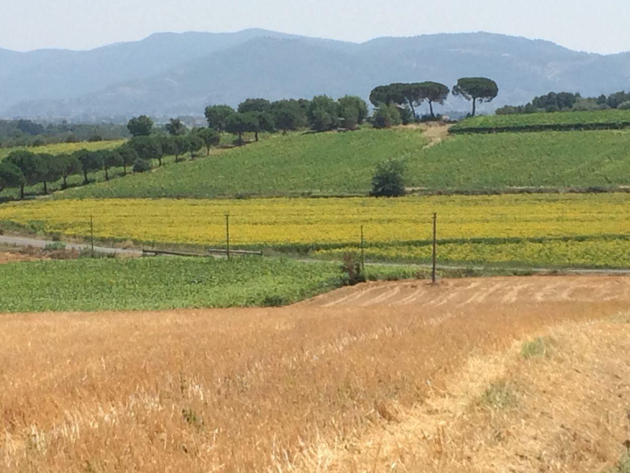 Casa di amici in cortona toscane ecco italia for Piccoli progetti di case toscane