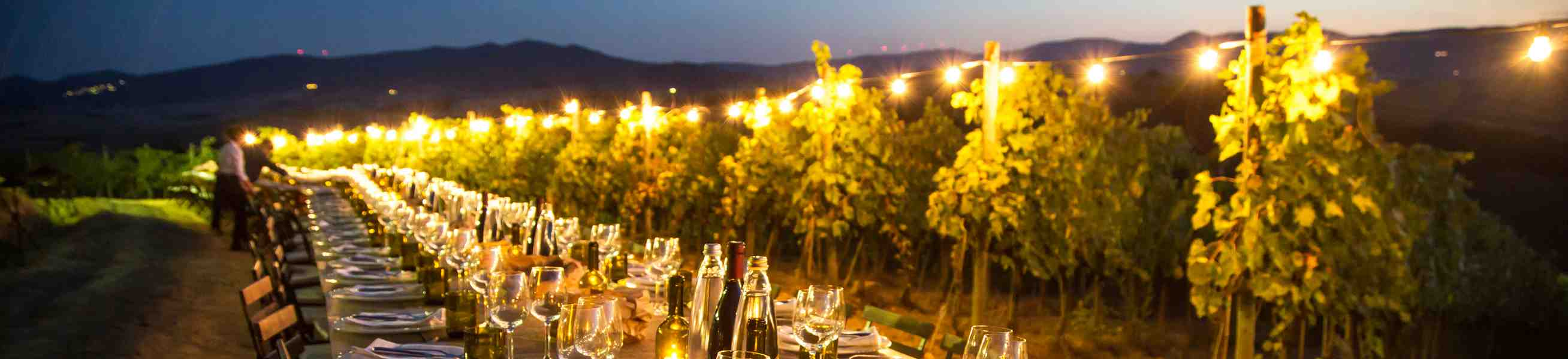 Wijngaard Italie